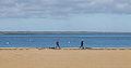 Promenade sur la plage d'Arcachon en hiver - Walk on the beach in Arcachon in winter (11477334214).jpg