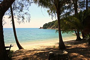 Sibu Island - The beach at Sibu Island Rimba Resort.