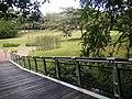 Putrajaya, the Botanical Garden 06.jpg