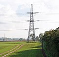 Pylon - geograph.org.uk - 581058.jpg
