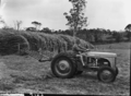 Queensland State Archives 1754 Fodder crops and conservation South East Queensland March 1955.png