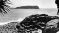Queensland State Archives 2115 Cook Island from Fingal Giants Causeway in foreground c 1934.png