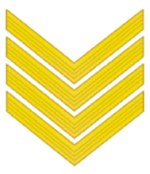 Komandarm - Insignia