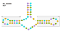 RNA NC 003540 RZ+.png