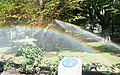 Rainbow at the Rideau Hall - panoramio.jpg
