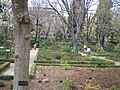 Real Jardín Botánico (Madrid) 04.jpg