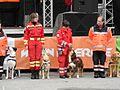 Rettungshunde am Nationalfeiertag 2012 08.jpg