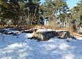 Rinkeby kvarnar 2013a 07.jpg