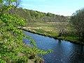 River Doon - geograph.org.uk - 422309.jpg