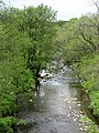 River East Allen north of Spartylea Bridge - geograph.org.uk - 445285.jpg
