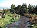 River Mimram, Tewin Bury Farm - geograph.org.uk - 1029093.jpg