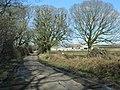 Road passes Newton Bungalow Farm - geograph.org.uk - 1703811.jpg