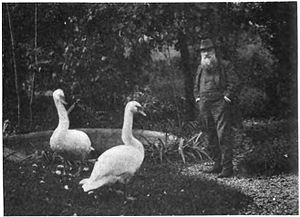 New Poems - Rodin at Meudon, where Rilke worked as secretary