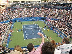 Rogers Cup Djokovic vs Tomic19.JPG