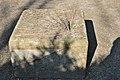 Rombergpark-100406-11958-Sonnenuhr.jpg