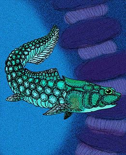 <i>Romundina</i> Early Devonian genus of placoderm fish