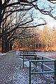Rybník Bašta - Písek (003).jpg