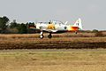 SAAF - Harvard Aircraft-003.jpg