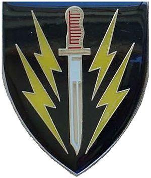 61 Mechanised Battalion Group - 61 Mechanised Battalion emblem