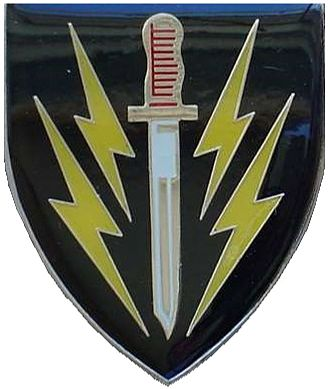 61 Mechanised Battalion Group - 61 Mechanised Battalion emblem