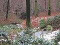 Sachgesamtheit Küchwaldpark. Bild 21..JPG