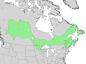 Salix pyrifolia range map 3.png