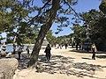 Sando of Itsukushima Shrine 3.jpg