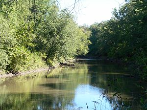 Sangamon River - The Sangamon River near Decatur.