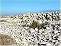 Santa Ana Wash, Greenspot Rd, Mentone, CA 6-24-12f (7455160860).jpg