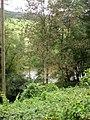 Sauerfluss (River Sauer) - geo.hlipp.de - 41477.jpg