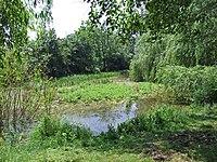 Sausee-seckbach002.jpg
