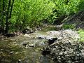 Scherbakovka river (Volgograd region) 001.JPG
