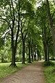 Schlosspark Matzen 13.JPG