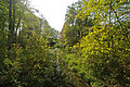 Schulenbrooksbeek - Rathuuspark2.jpg