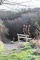 Seat Overlooking Brewsdale - geograph.org.uk - 630797.jpg