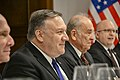 Secretary Pompeo Meets With Prime Minister Orban - 47065351251.jpg