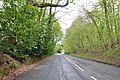 Section of the old A38 on Haldon Hill - geograph.org.uk - 1272183.jpg