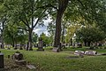 Sections 9 and 8 - Harvard Grove Cemetery.jpg