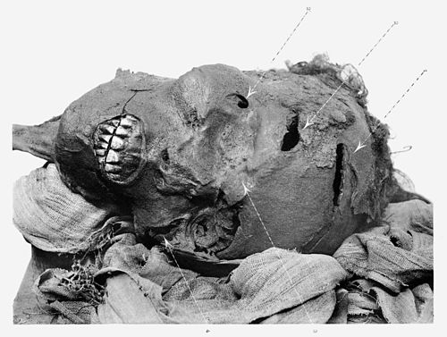 Mummified head of Seqenenre depicting his battlewounds Sequenre tao.JPG