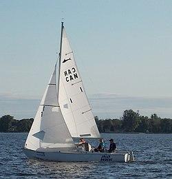 Shark 24 Sailboat Jolly Rodent 2259.jpg