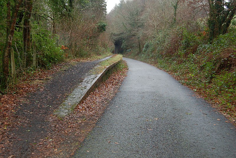 File:Shaugh Bridge Halt.jpg