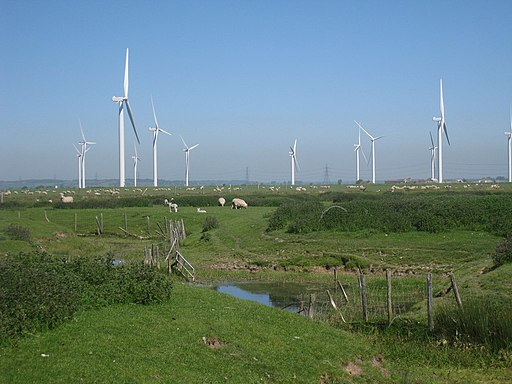 Sheep and Wind Farm, Romney Marshes - geograph.org.uk - 1880978