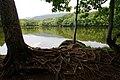 Shiretoko Goko Lakes Yonko01n.jpg