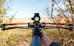 Shooting A Crossbow.jpg