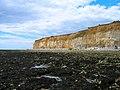 Short Cliff - geograph.org.uk - 881871.jpg
