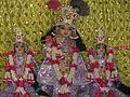 Shri radha vinod bihari ji choli mp.jpg