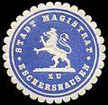 Siegelmarke Stadt Magistrat zu Eschershausen W0235884.jpg