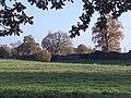 Silchester Roman city walls 52.jpg