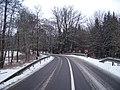 Silnice 237 u rybníka Horní Kracle.jpg