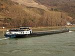 Singa, ENI 02317703 at the Rhine river pic6.JPG